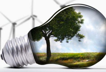 Un questionario su energie rinnovabili ed efficienza energetica nelle Pmi